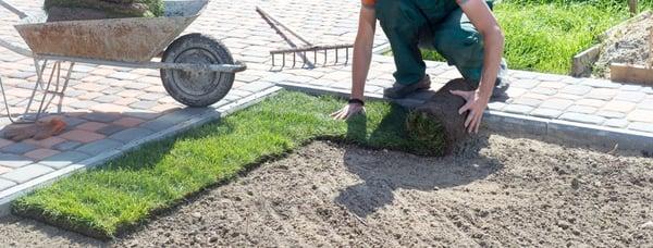 laying-turf
