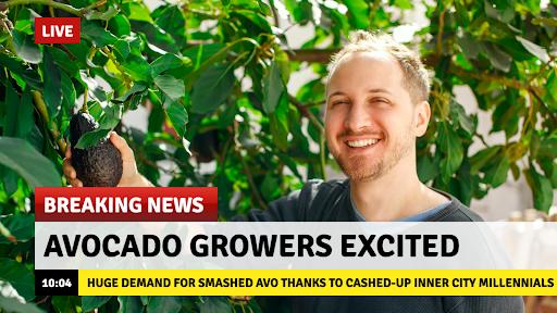 avocado meme