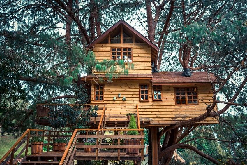 build-treehouse