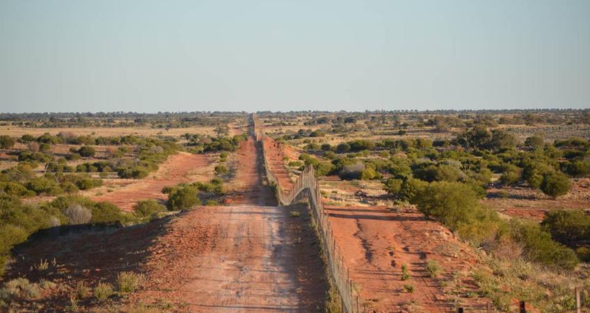worlds-longest-dog-fence