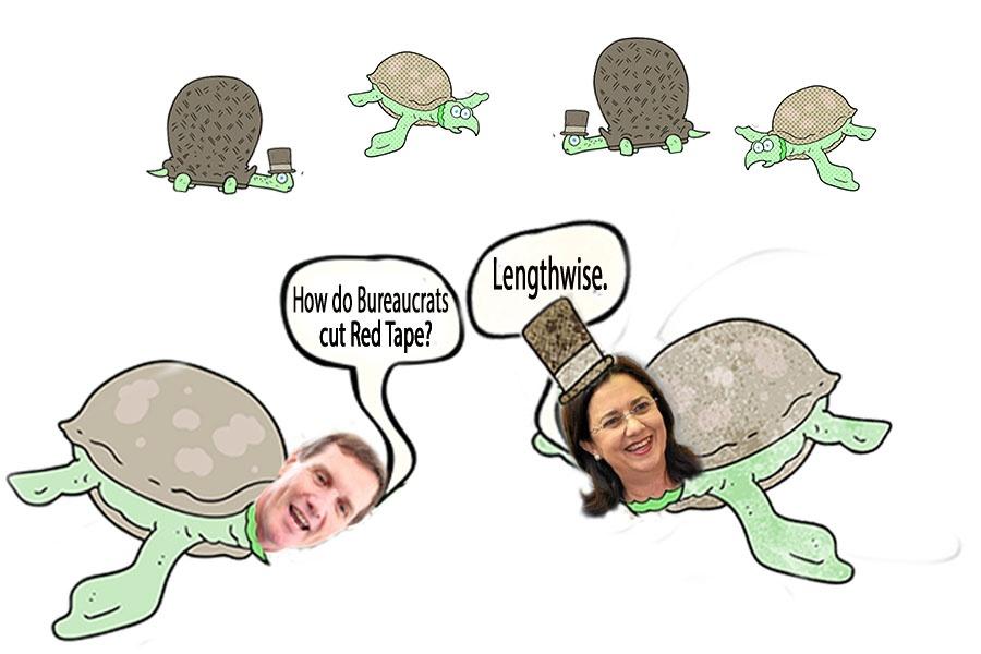 turtles-talking.politican