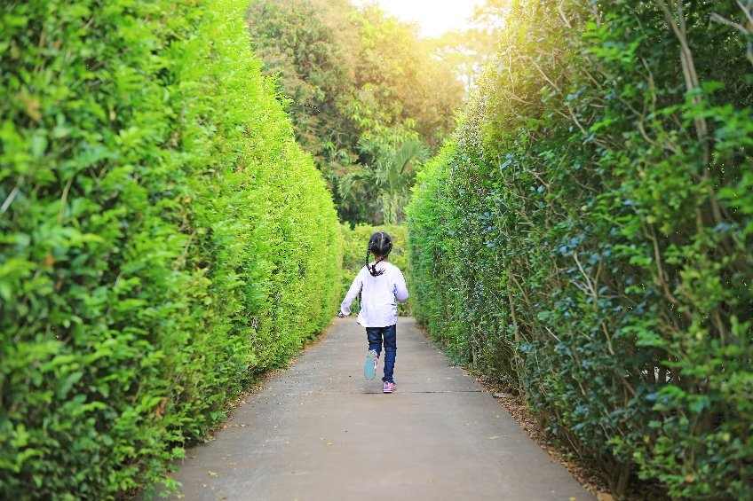 girl playing in a hedge maze