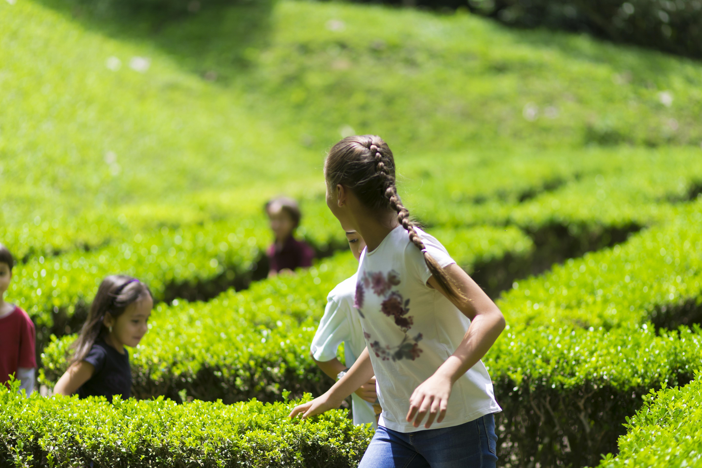 Garden maze with children